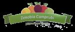zenobia_campubri